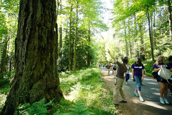 YesBC helps youth learn about the environment